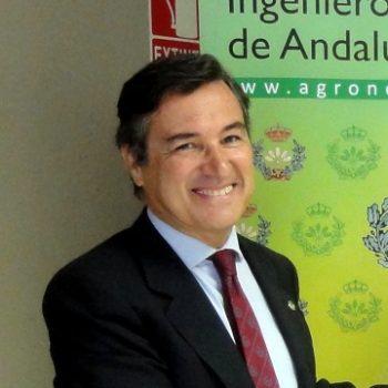 D. Jerónimo Cejudo