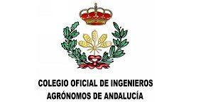 2Criandonaranjos (Ricardo Aguayo) (2)